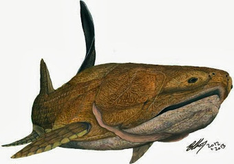 Early fish ancestor found in China | Aux origines | Scoop.it