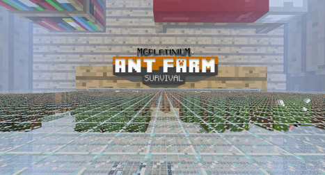 Ant Farm Survival Map for Minecraft 1.5.2 | Free Download Minecraft | Scoop.it