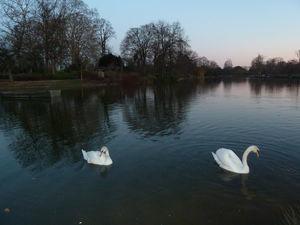 (Mes Parenthèses...): Bois de Vincennes   (Mes Parentheses...) en voyage   Scoop.it