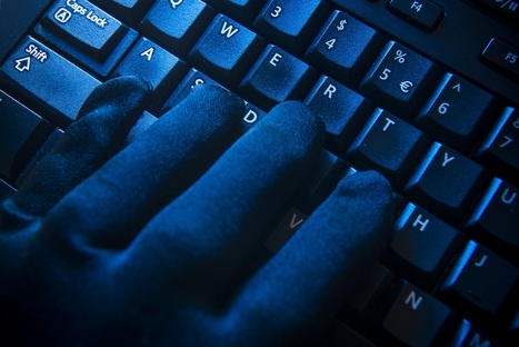 Silk Road 2.0 Hit by 'Sophisticated' DDoS Attack | CoinDesk | Crypto | Scoop.it