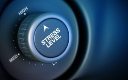 Stress Found to Shrink Important Regions of the Brain | Forward Thinking Magic | Scoop.it