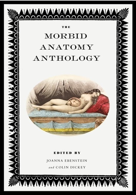 Morbid Anatomy Giftshop Holiday Sale: 20% Off Selected Items ... | Taxidermy anthropology | Scoop.it