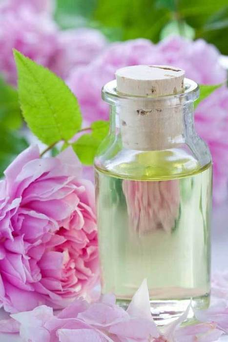 Как сделать из розового масла розовую воду