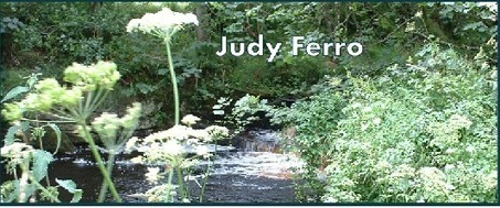Judy Ferro | Idaho Authors | Scoop.it