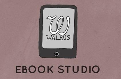 Enterrer le livre numérique enrichi : ne pas penser 'livre', mais 'histoires' | Livre enrichi | Scoop.it