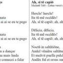 Ah, Si Te Capio! ;-)   Ollarios   Scoop.it