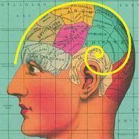 Comment le cerveau des optimistes zappe les mauvaises nouvelles | Fonctionnement du cerveau & états de conscience avancés | Scoop.it