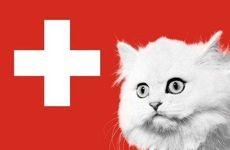 Swiss Animal Rights Activists Call To Ban Eating Cats & Dogs For Christmas! | Plant Based Transitions | Scoop.it