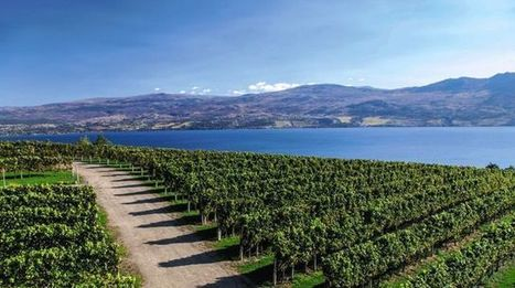 Colombie-Britannique, le pays des merveilles | Le vin quotidien | Scoop.it