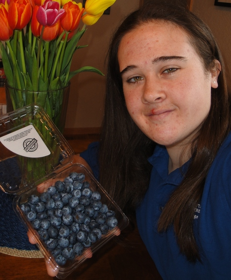 Frozen blueberries pack more powerful antioxidant punch | Sustain Our Earth | Scoop.it