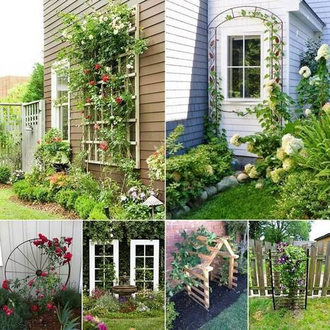 15 unique trellis ideas for your home 39 s garden