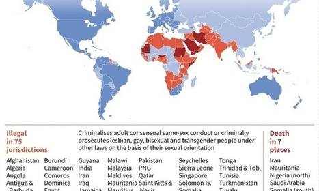 Egypt jails 11 men accused of homosexuality | LGBT Times | Scoop.it