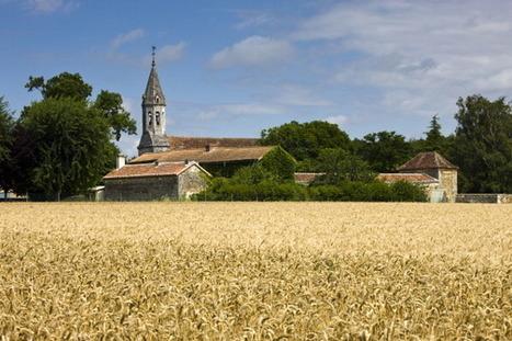La France se dote d'une force de frappe dans le commerce du blé dur - RFI | impotation des céréale | Scoop.it