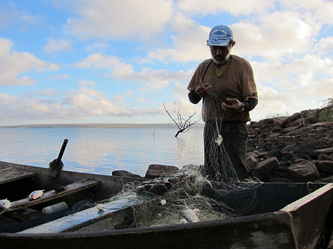 The Partitioning of Brazil's Ocean and Rivers Threatens Small-Scale Fishing Families | Aquaculture | Scoop.it