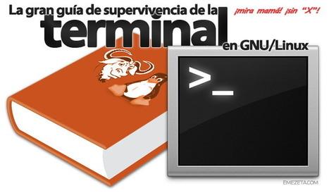 Guia de supervivencia para la seguridad en GNU / LInux | Software libre | Scoop.it