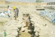 Oman: 3500-yr-old relics found - Global Arab Network - English News | Historical Revolution | Scoop.it
