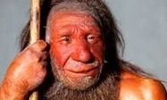 Neanderthals may have feasted on meat and two veg diet | Cultural Worldviews | Scoop.it