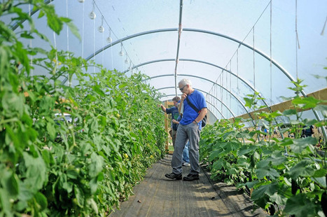 Women on the rise in organic farming   The Portland Press Herald / Maine Sunday Telegram   Local Food Systems   Scoop.it