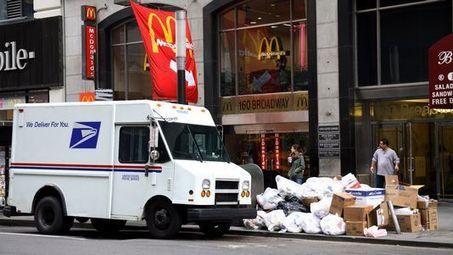 Les insectes dévorent des tonnes de déchets dans les rues de New York | NPA - déchets et recyclage | Scoop.it