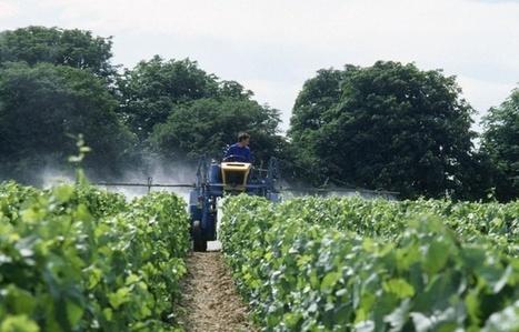 Exposition aux pesticides: Vivre à la campagne est-il vraiment meilleur pour la santé? | Comprendre le réel intérêt de produire une agriculture BIO en France plutôt que d'importer des produits présentant un label pas vraiment Certifié. | Scoop.it