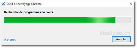 Outil de nettoyage Chrome   Chroniques libelluliennes   Scoop.it