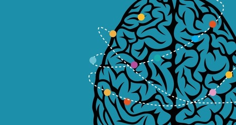 Brain Traffic Control - Comstock's Magazine | Social Neuroscience Advances | Scoop.it