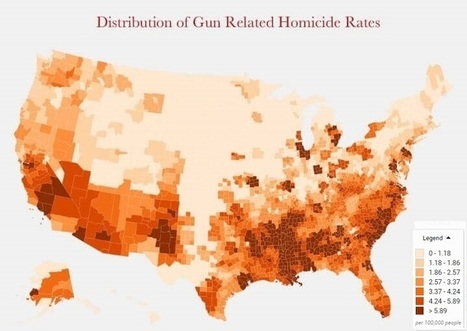 Where Americans Are Killed By Guns: US Homicide & Suicide Death Rates | Fantastic Maps | Scoop.it