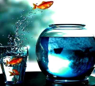 Contre le stress, changez d'air ! | ML Coaching | Scoop.it