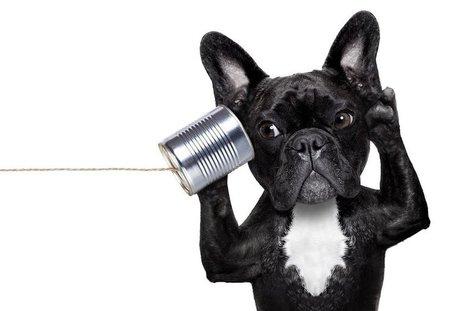 Para fidelizar a los clientes de redes sociales es esencial la escucha activa | comunicologos | Scoop.it
