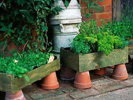 12 unusual and upcycled container gardens | Upcycled Garden Style | Scoop.it