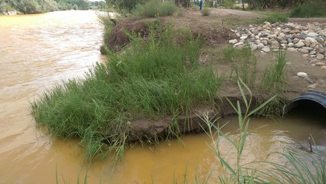 CO Toxic Mine Spill Update: EPA To Pay Up, 3 Million Gallons Spilled   Environment   Scoop.it