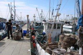 Fishing industry in $25 million hit | Aquaculture | Scoop.it
