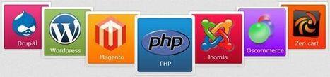 Website Designing Company Chennai | Website Designing | Pinterest | Web Design Company In Chennai | Scoop.it