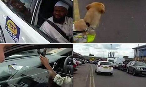 Muslim taxi driver refuses to take disabled passenger with guide dog | Accessible Travel | Scoop.it