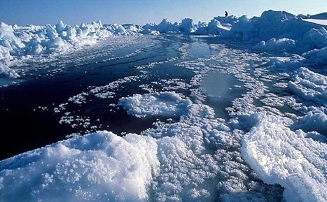 Study: 'Virtually' Certain Impact of Manmade 'Climate Change is Observable in Arctic Sea Ice Already Today' | Coffee Party Science | Scoop.it