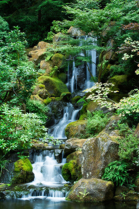 Waterfall, Portland Japanese Garden | Dave Wilson Photography | Japanese Gardens | Scoop.it