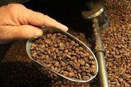 Atiu: Coffee revival in the Cook Islands - New Zealand Herald   Coffee Lovers   Scoop.it