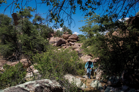 How a huge Arizona mining deal was passed — and could be revoked | Organic Farming | Scoop.it