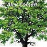 Testi e opere di Alex Coman