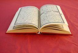 Emirats arabes unis : Internet responsable de la désertion des bibliothèques | BiblioLivre | Scoop.it