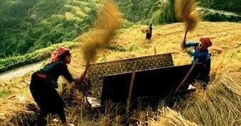 Vietnam Adventure Trekking Tours - Trekking Tours in Vietnam | Special experiences | Scoop.it