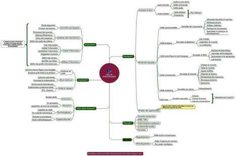 Infographie / Mindmap : les enjeux, objectifs et méthodes de la veille d'informations | Time to Learn | Scoop.it