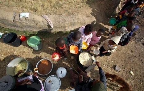 Consumers International Blog: Africa update: The food security ... | Food Security | Scoop.it