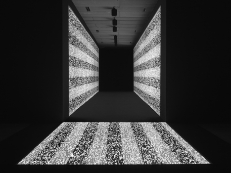 Ryoji Ikeda_data.path | educARTE | Scoop.it