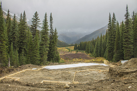 UPDATED: Jumbo Glacier Resort Project not substantially started - Nelson Star | superheroes of stoke | Scoop.it
