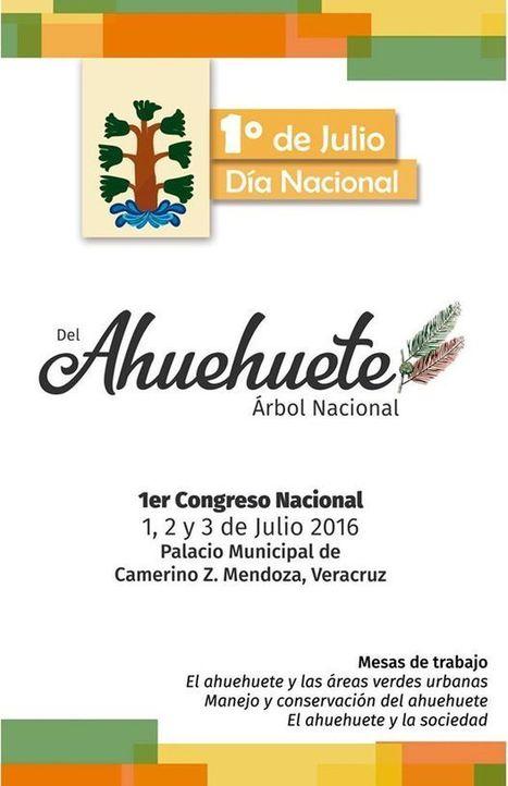 1er Congreso Nacional del Ahuehuete | Asómate | Educacion, ecologia y TIC | Scoop.it