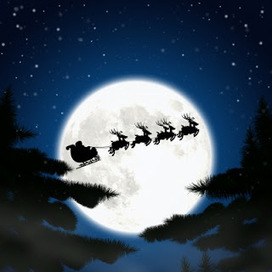 Retired in Malaysia: Merry Christmas and Happy New Year to All | American expats | Scoop.it