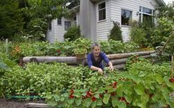 Famous naturalist's ideals are nurtured in a prolific urban garden - The Seattle Times | In the garden | Scoop.it