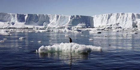 L'élévation du niveau des mers pourrait atteindre 2mètres à la fin du siècle | Les coups de coeur de D'Dline 2020 | Scoop.it