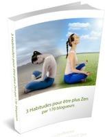 4 Vidéos Cadeaux | Route vers le Zen | Le Futur que je mérite | Scoop.it